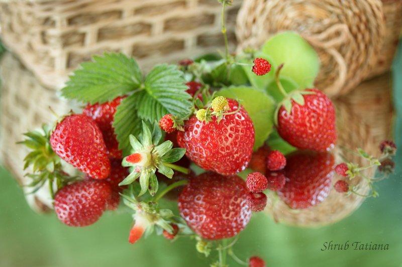 натюрморт, ягоды, клубника, листья Клубникаphoto preview