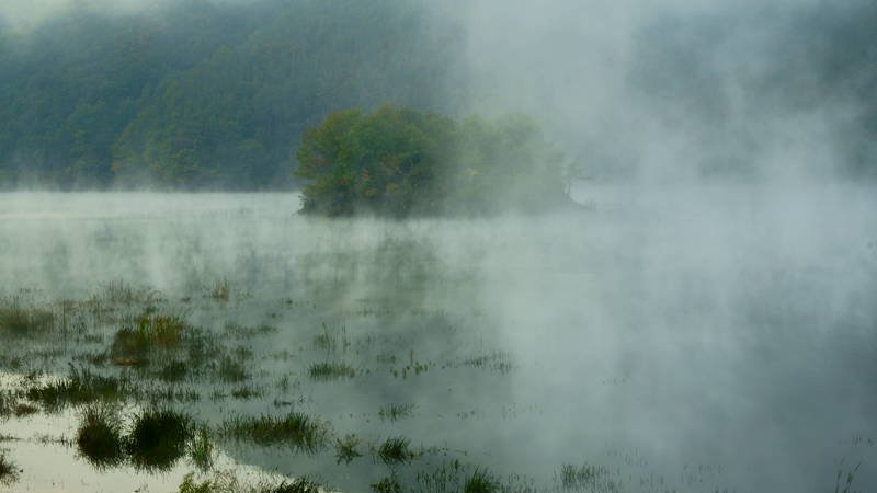 south korea, jeollabukdo, autumn, mroning, lake, fog, tree, fantastic, beautiful, island, mountain, Water fog and small islandphoto preview