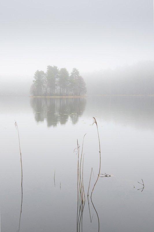 Туманный островокphoto preview