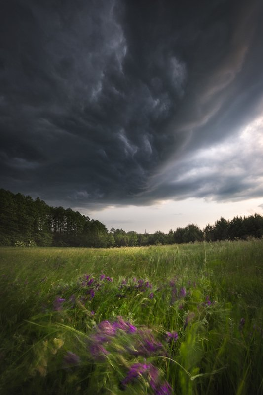 storm clouds light flowers outdoors drama sky Podlasie Poland I\'ll get hit someday...photo preview