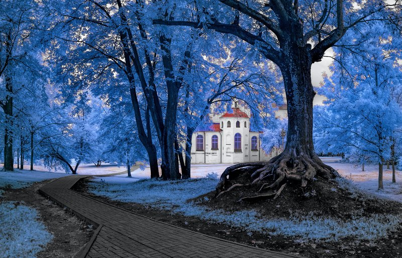infrared,ик-фото,инфракрасное фото, инфракрасная фотография, пейзаж, лето Было время.photo preview