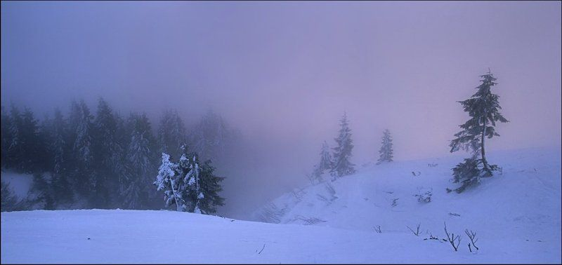 Туманный рассвет в горахphoto preview