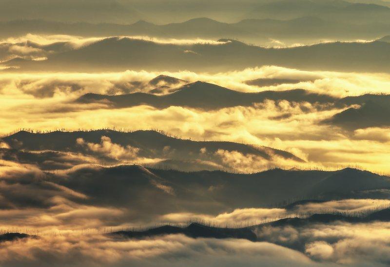 Хабаровский край, горы, рассвет Золото небесphoto preview