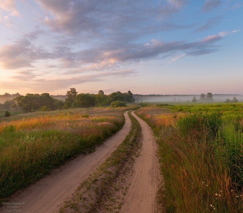 дорога, грунтовка, сельская дорога, средняя полоса, утро, туман, перспектива, луга \