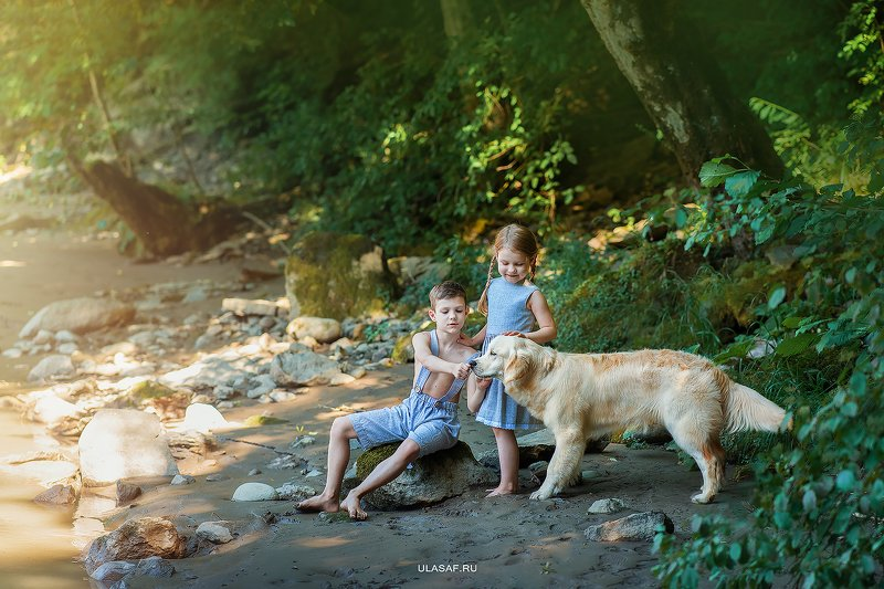 art photo, лето, summer, портрет, река, горы, ребенок, дети, животное, собака, golden retriver, dog, river, радость, people, малыш, друзья, happy, любовь, love, 105mm, kid, children, beautiful, puppy, щенок, magik, волшебство ***photo preview