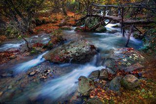 Красочно-журчащий, горный ручеёк в Крыму