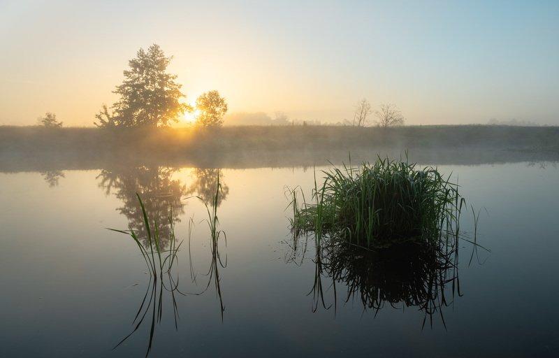 Утренние краски июняphoto preview