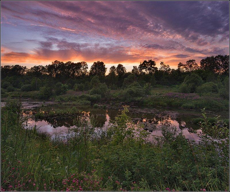 москва, вечер, пруд *  *  *photo preview