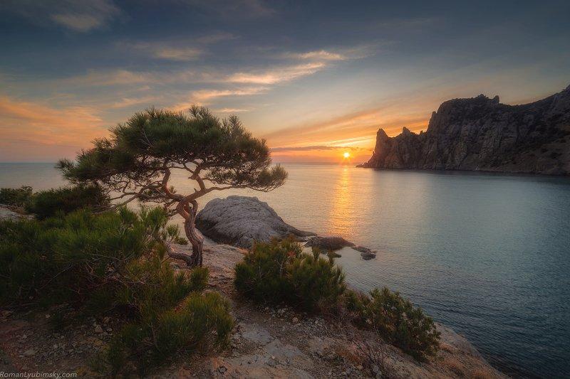 крым, закат, новый свет Наблюдатель за солнцемphoto preview