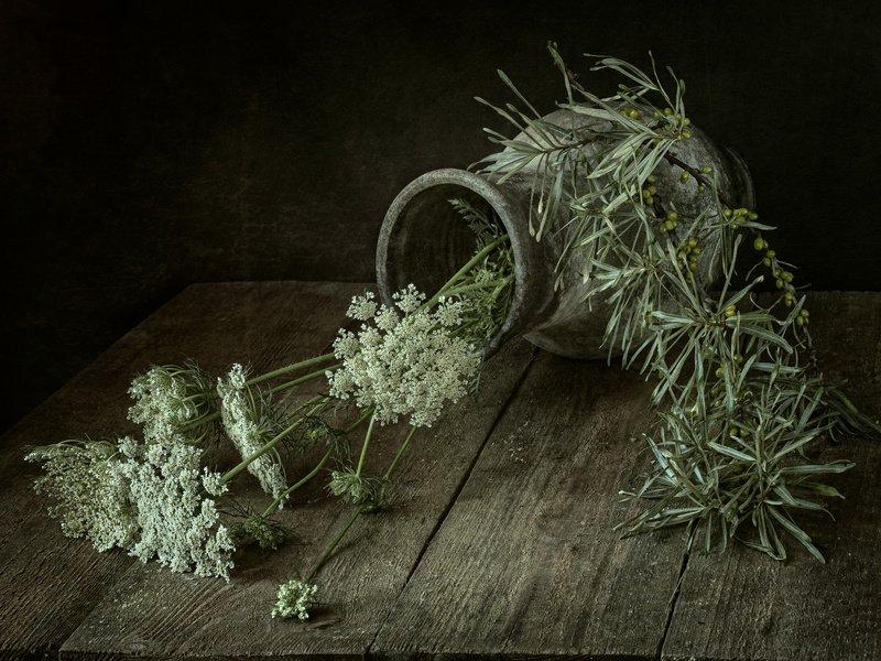 Симфония трав луговых...photo preview