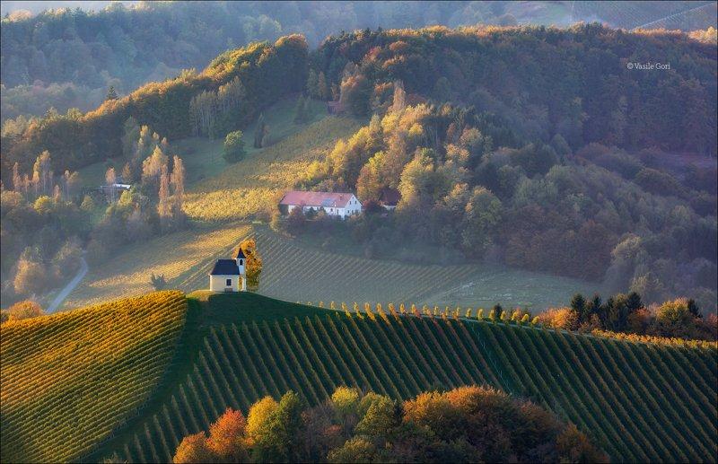 dreisiebner kapelle,свет,часовня,штирия,chapel,гамлитц,австрия,gamlitz- sernau,landscape,панорама,осень Осенний калейдоскопphoto preview