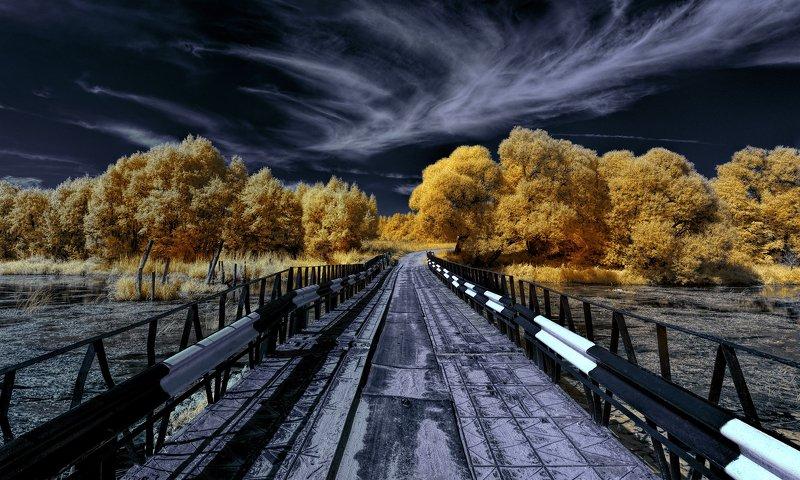 infrared,ик-фото,инфракрасное фото, инфракрасная фотография, пейзаж, лето По дороге в жаркий день.photo preview