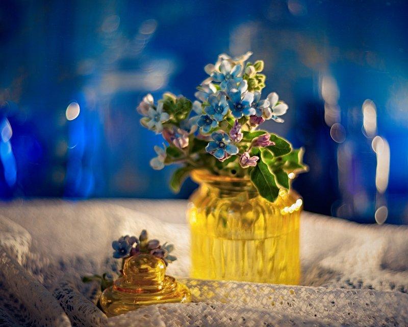 натюрморт желтый синий гелиос боке helios stilllife bokeh photo preview