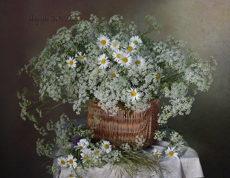 натюрморт,цветы,лето,вера павлухина, Просто цветыphoto preview