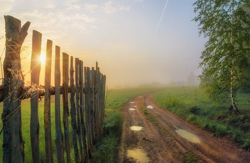 утро, деревня, дорога,солнце, рассвет Летнее утроphoto preview