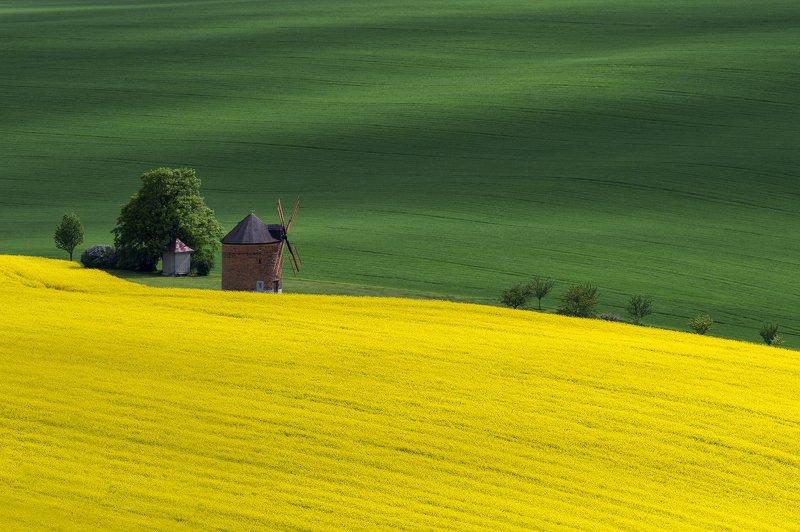 landscape, moravia, windmill, green, yellow, Windmillphoto preview