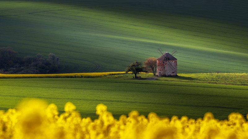 Moravian dreamphoto preview