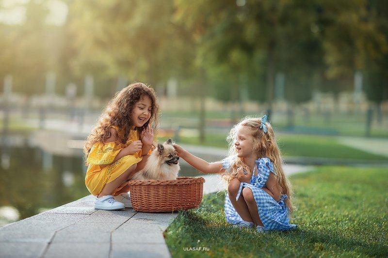 art photo, лето, summer, портрет, ребенок, дети, животное, собака, шпиц, радость, people, малыш, друзья, happy, любовь, love, 105mm, kid, children, beautiful, puppy, щенок, magik, волшебство ***photo preview
