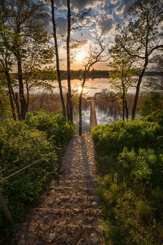 sunset over the lake sun water green trees sunlight mirror dranikowski stairs bridge poland sony clouds Sunset over the lakephoto preview