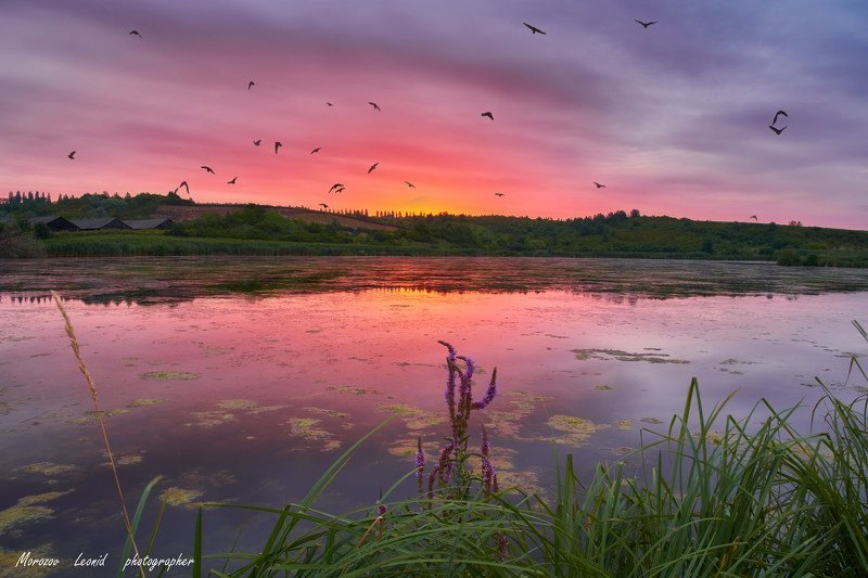 #nature, #туман, #лес, #oсень, #украина, #карпаты, #пейзаж, #закат, #туман, #солнце, #свет, #mountain range, #mountains, #туризм, #лес, #nature, #природа, начало.....photo preview