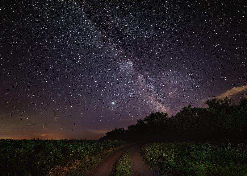 млечный путь, звёзды, пейзаж, лето, дорога, природа, юпитер, сатурн, небо, поле Южная звёздная ночьphoto preview