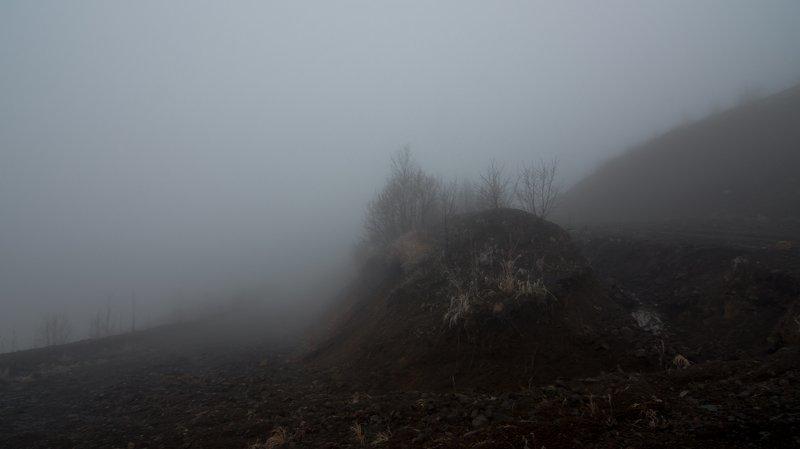 fog,landscapes, travel, nature, пейзаж, туман Melancholy roadphoto preview