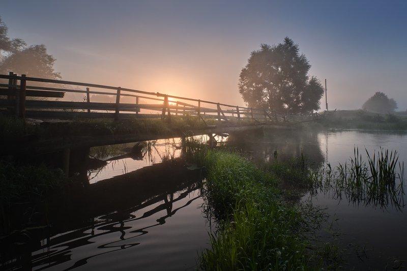 утро, рассвет, туман, река, мост Старый мостphoto preview