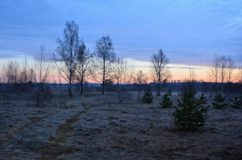 пейзаж, туман, рассвет, акварель, деревня Предрассветное состояниеphoto preview