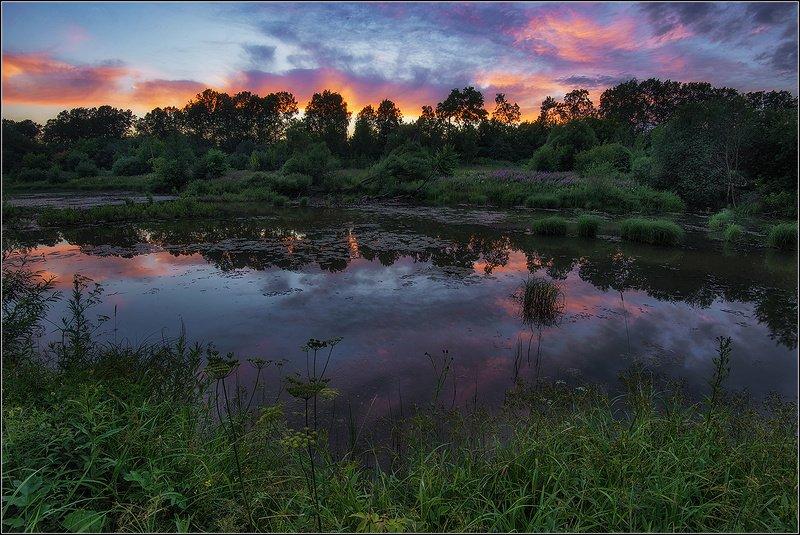 москва, пруд, вечер. *  *  *photo preview