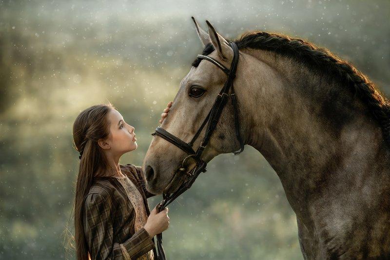 портрет, девушка, женский, портрет, конь, андалуз Валерия и Асендадоphoto preview