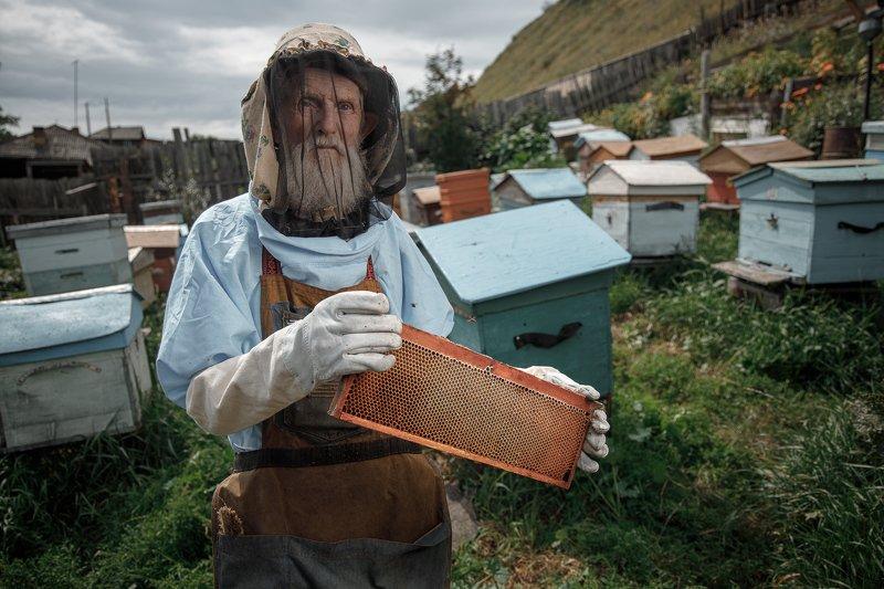 портрет, провинция, глубинка, жанровый портрет, пчеловод, мед, дед, сибирь, красноярск Пчеловод Григоричphoto preview