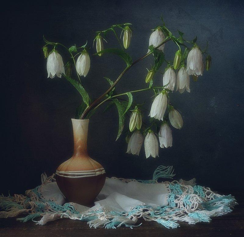 натюрморт,цветы,колокольчики с колокольчиками...photo preview