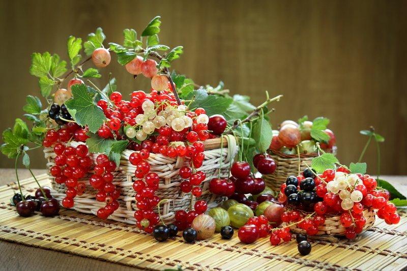 натюрморт, ягоды, смородина, крыжовник, вишня Ягодная середина летаphoto preview
