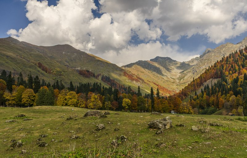 nevant60, пейзаж, красота, природа, горы, абхазия Альпийские луга Абхазииphoto preview