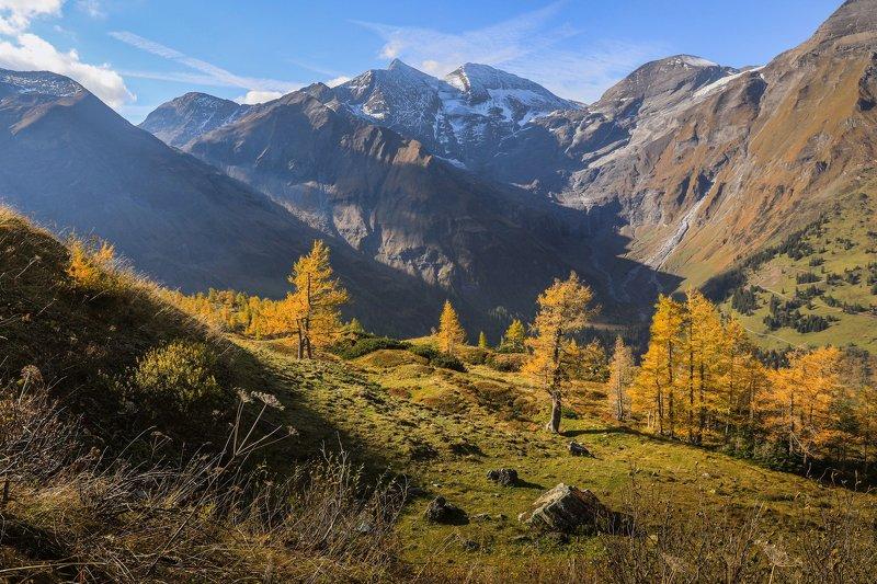 австрия, альпы. долина, горы, утро, Австрийские Альпы утром.photo preview