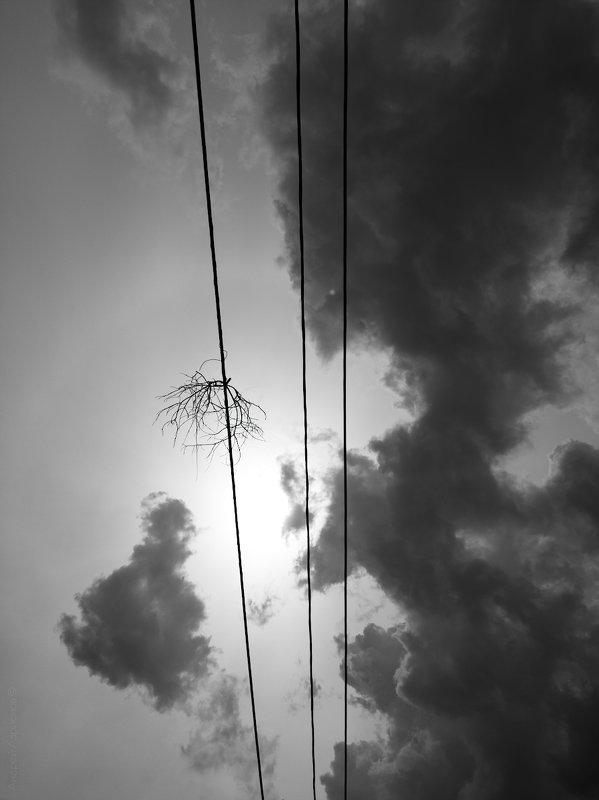 небо, облака Смутное времяphoto preview