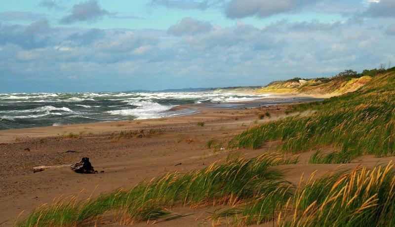 куршская коса, балтийское море. Ветреный денёк.photo preview
