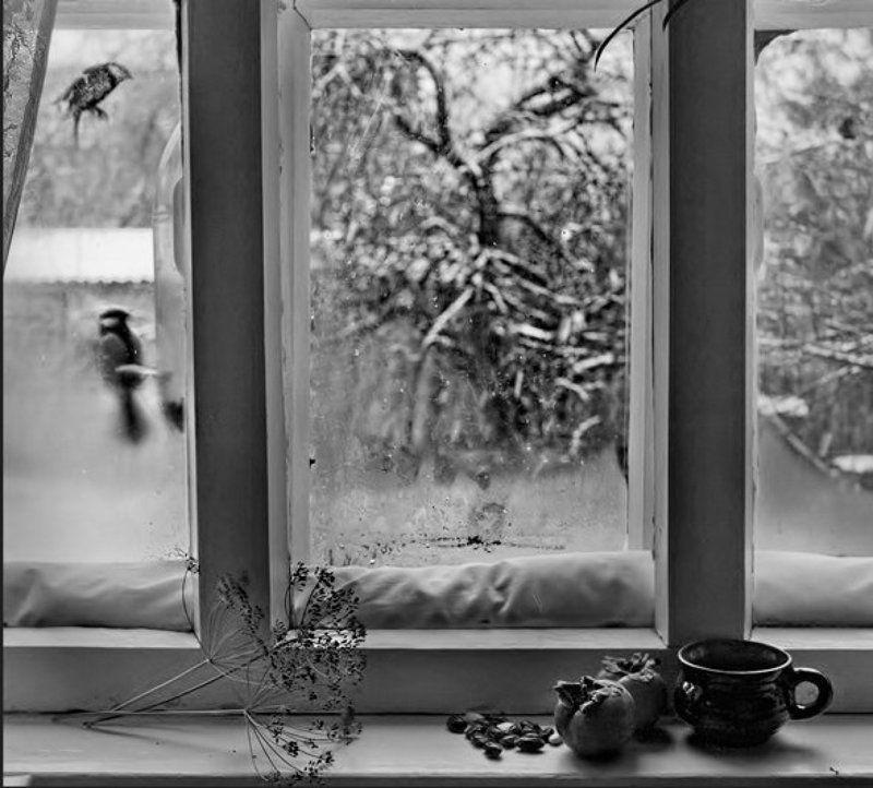 Накануне зимыphoto preview