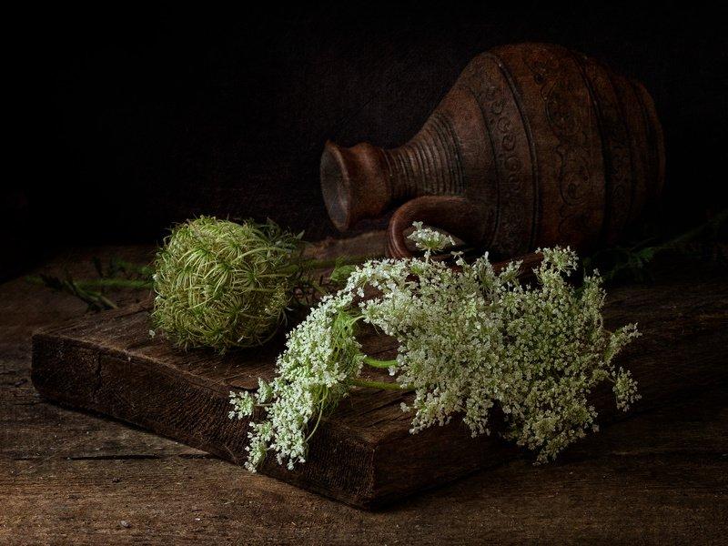 Вдыхая аромат цветов тех, неприметных...photo preview