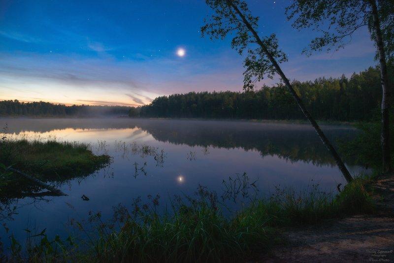 владимирская область, киржачский район, ночь, ночной пейзаж, звездная ночь, лунная ночь, лунный свет, летняя ночь, лесное озеро, озеро, березы, пейзаж \