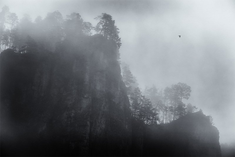 Вершины в тумане.photo preview