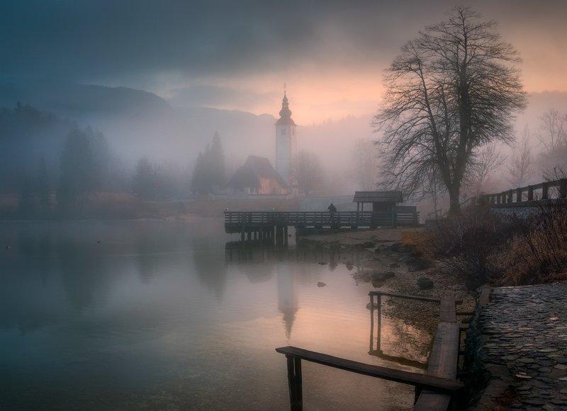 утро, туман, озеро, деревья, словения Затерянные в туманеphoto preview
