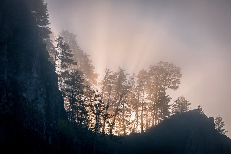 Сквозь утренний туман.photo preview