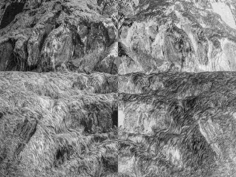 nature, inverted world, black and white photography, diptych, black and white, digital photography, conceptual. contemporary, fine art photography,  The inverted worldphoto preview