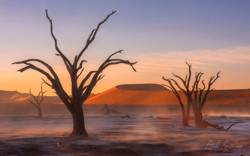 heat, аncient_skeletons, camel_thorn_trees orange_dune,s deadvlei, sossusvlei, namib_naukluft, namibia Танец Призраковphoto preview