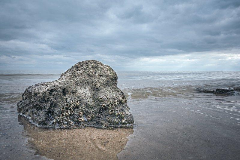 PRO Камень..photo preview