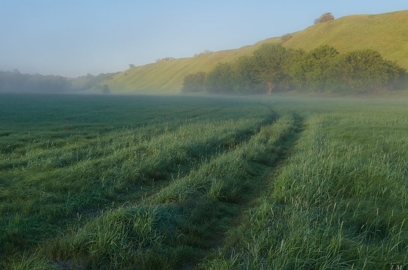 утро, туман, долина, зелень, луг, трава, холмы, пейзаж, лето, тропинка, summer, foggy, morning, mist, meadows, grass, green, hills, valley, landscape, fog, light Зеленая долинаphoto preview