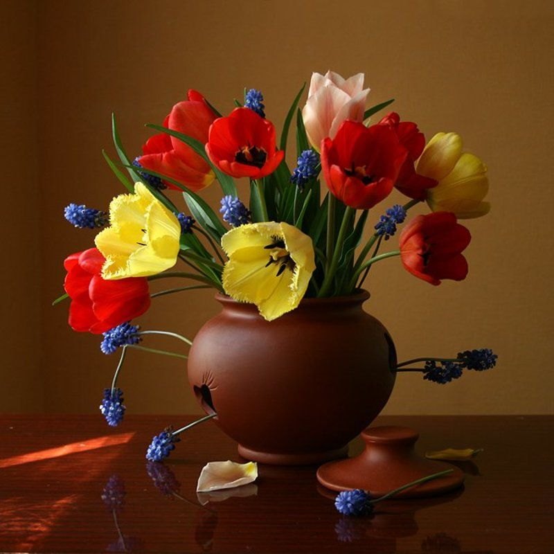 Тюльпаны.photo preview