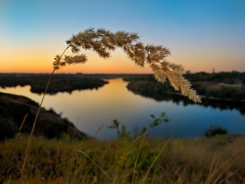 пейзаж,закат,лето,landscape,вид,река,небо,цвет,summer,sunset,колосок,трава, В закате догорающего летаphoto preview