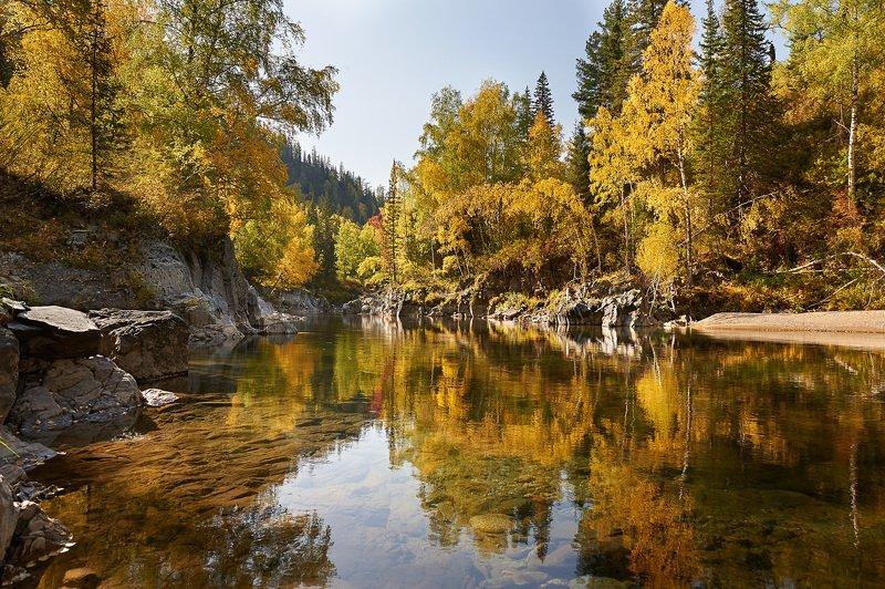 Осень золотаяphoto preview